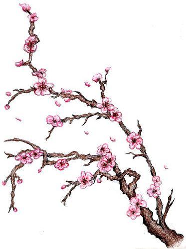 Cherry Blossom Tree Cherry Blossom Tree Tattoo Cherry Blossom Tattoo Blossom Tree Tattoo
