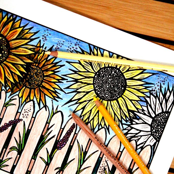 Download Five Free Flower Themed Adult Coloring Pages For Spring This Sunflower Complex