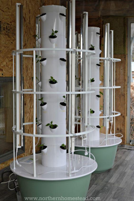 Planting A Hydroponic Garden Hydroponic Farming