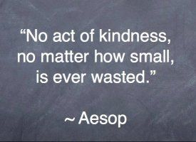 Making A Difference Quotes 14 Quotes To Inspire You  Aesop Wisdom And Inspirational