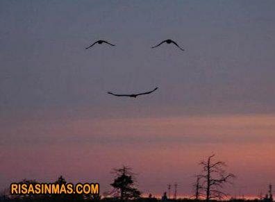 Comparte una sonrisa  http://bit.ly/KkM5K9