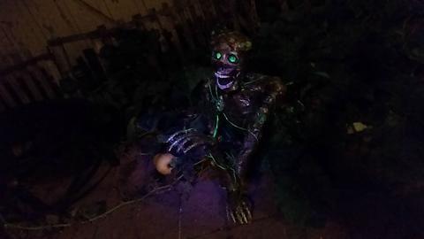 Garden mutant halloween decoration Halloween Pinterest Mad - mad scientist halloween decorations