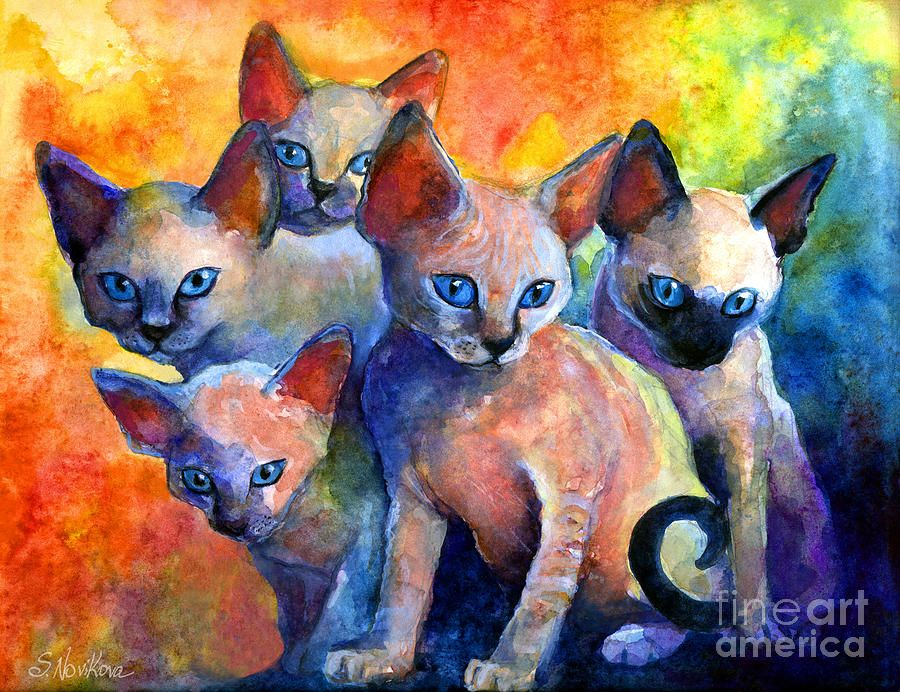 Devon Rex Kitten Cats Painting by Svetlana Novikova