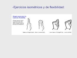 Resultado de imagen para ejercicios isometricos