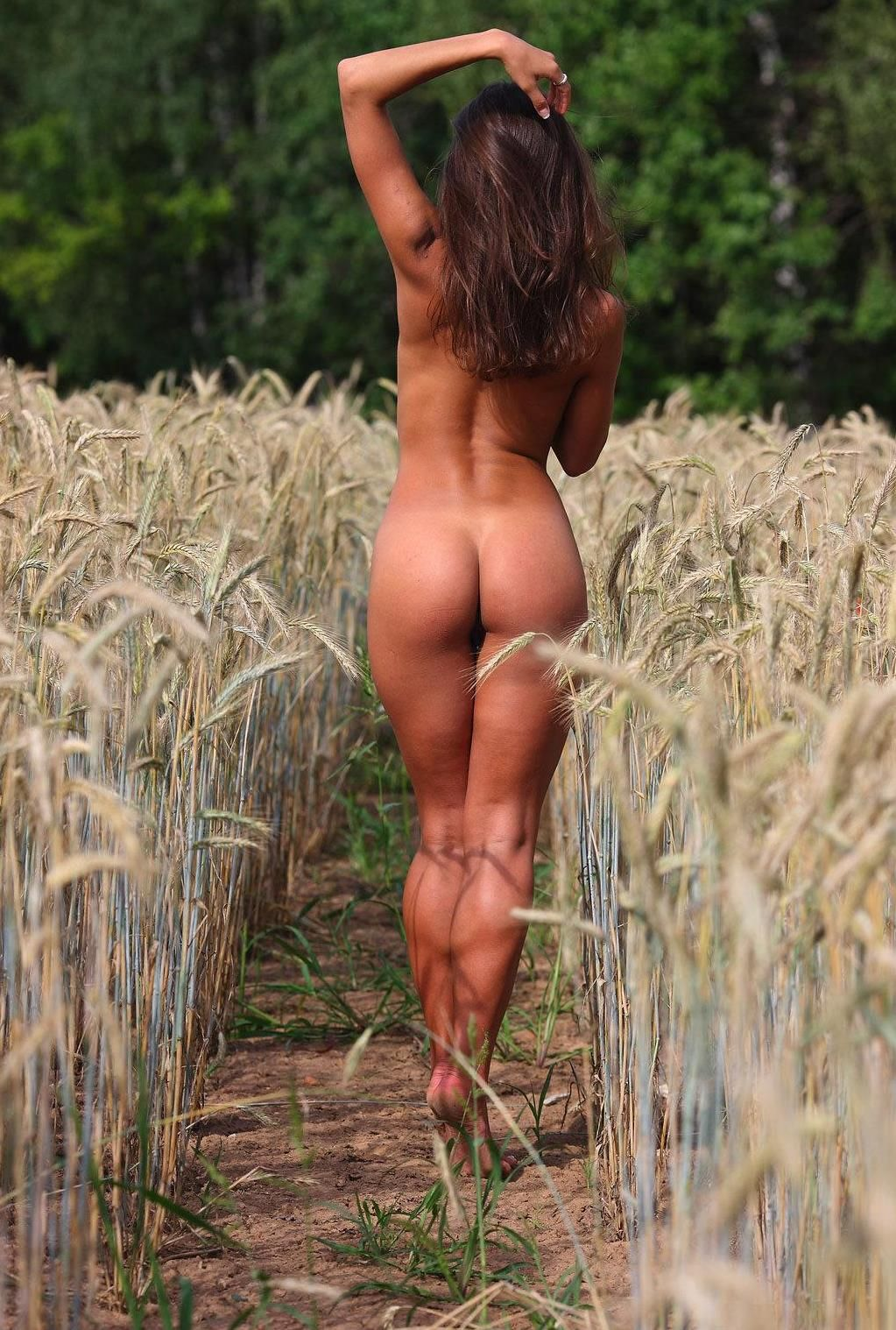 Your place Nude women in corn field antimated for