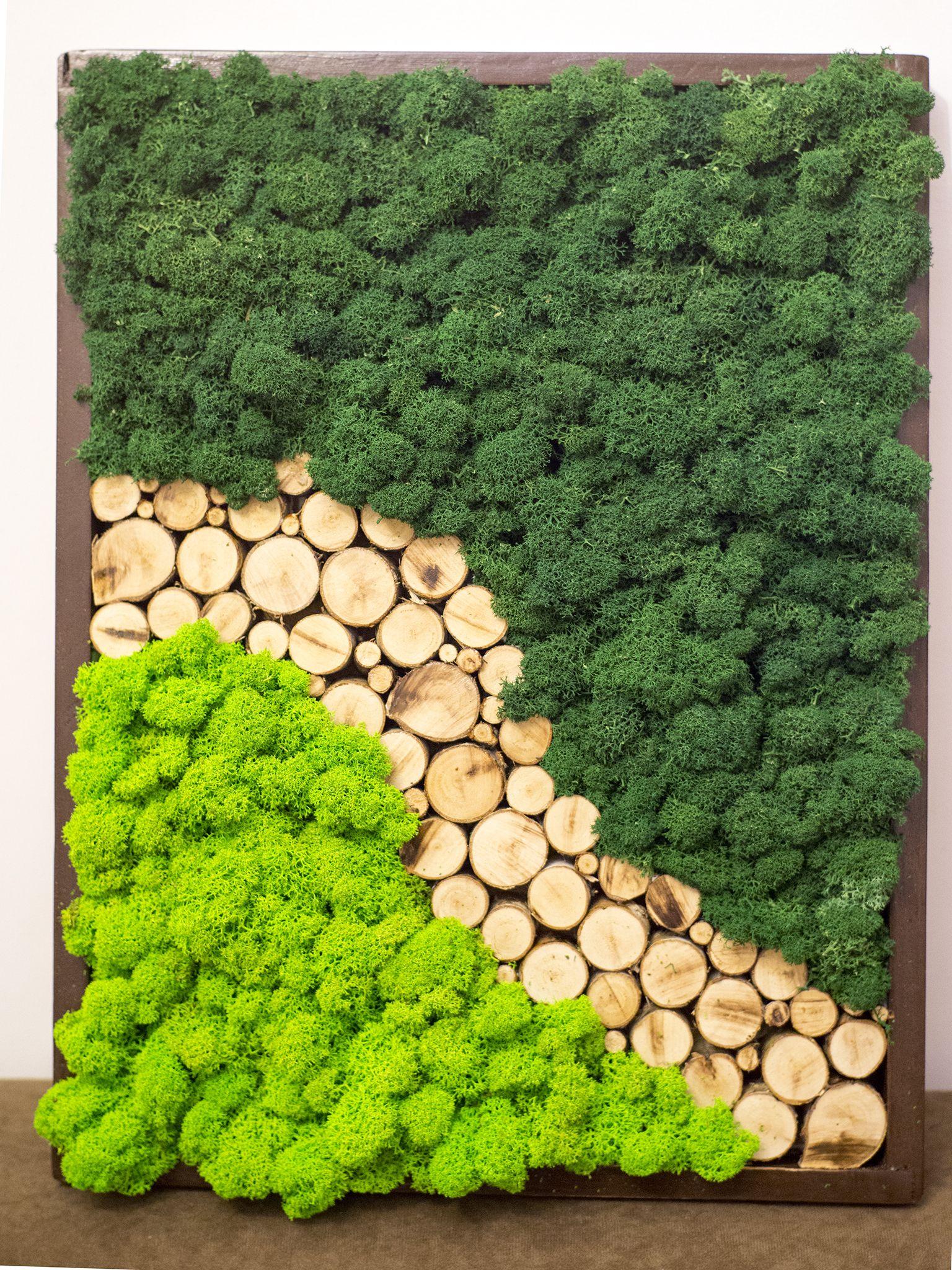 Pin By Wobbitz On Moss Moss Wall Art Moss Decor Moss Art
