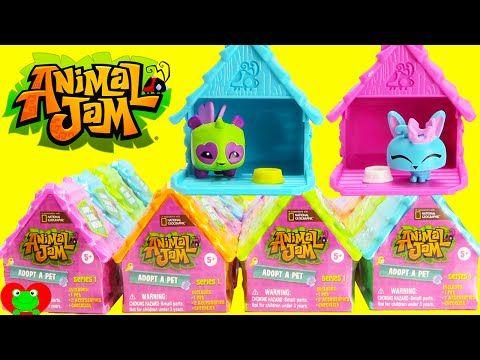 Animal Jam Adopt A Pet Youtube Cookie Swirl C Pinterest