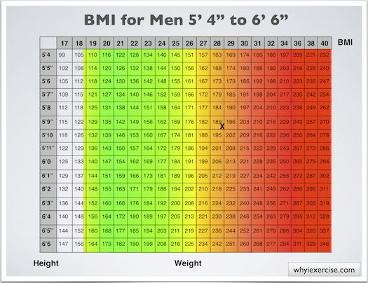 Body mass index with health risk charts and illustrations included - bmi index chart template