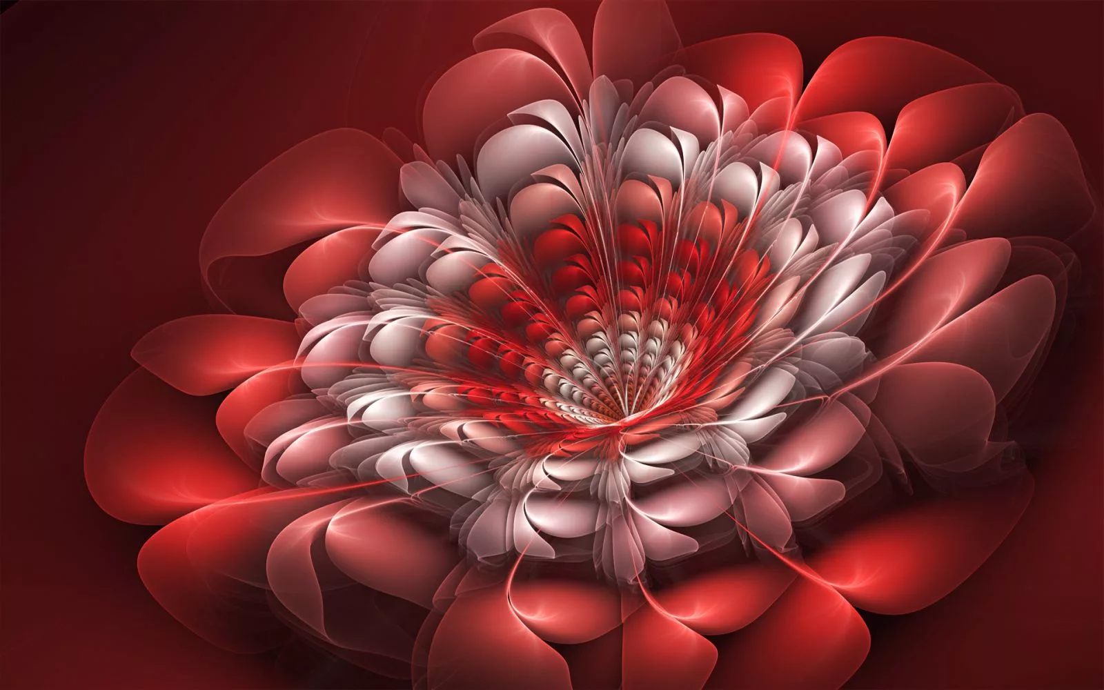 Обои цветок, краски, фрактал. Абстракции