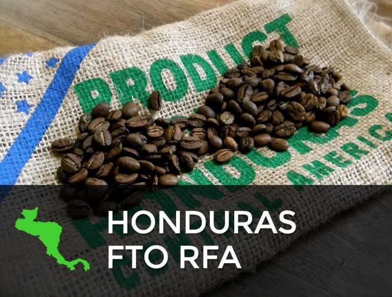 Green Coffee Beans from Central America Guatemala