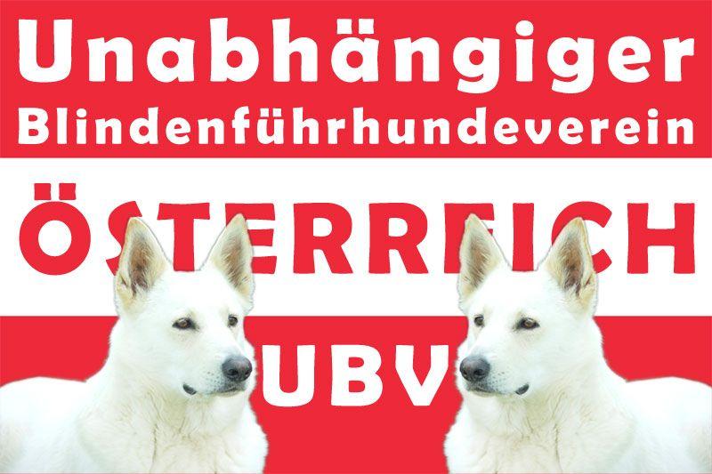 Pin Auf Blindenfuhrhund Sly