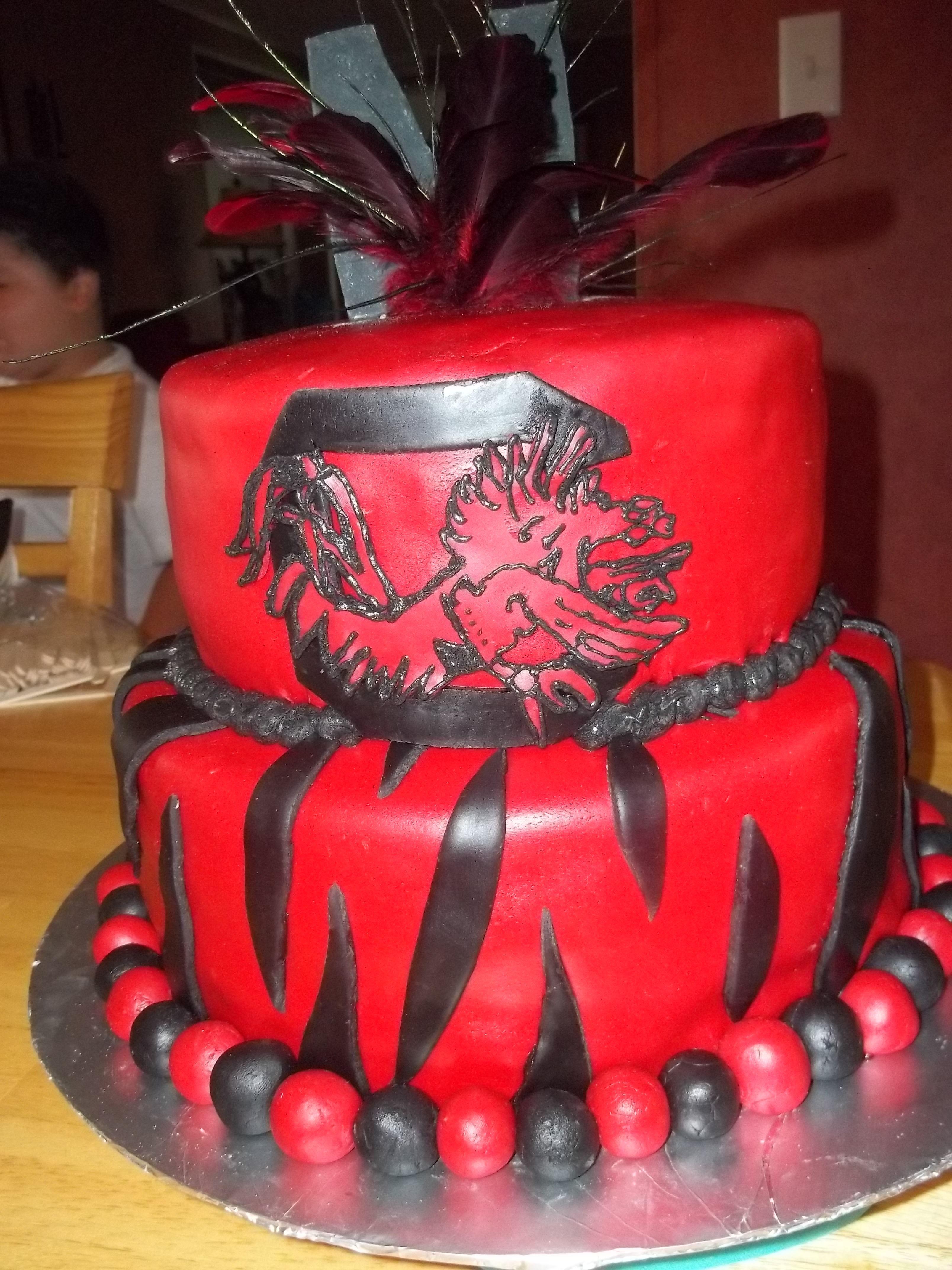 Carolina Gamecocks Birthday Cake Oh My Gosh