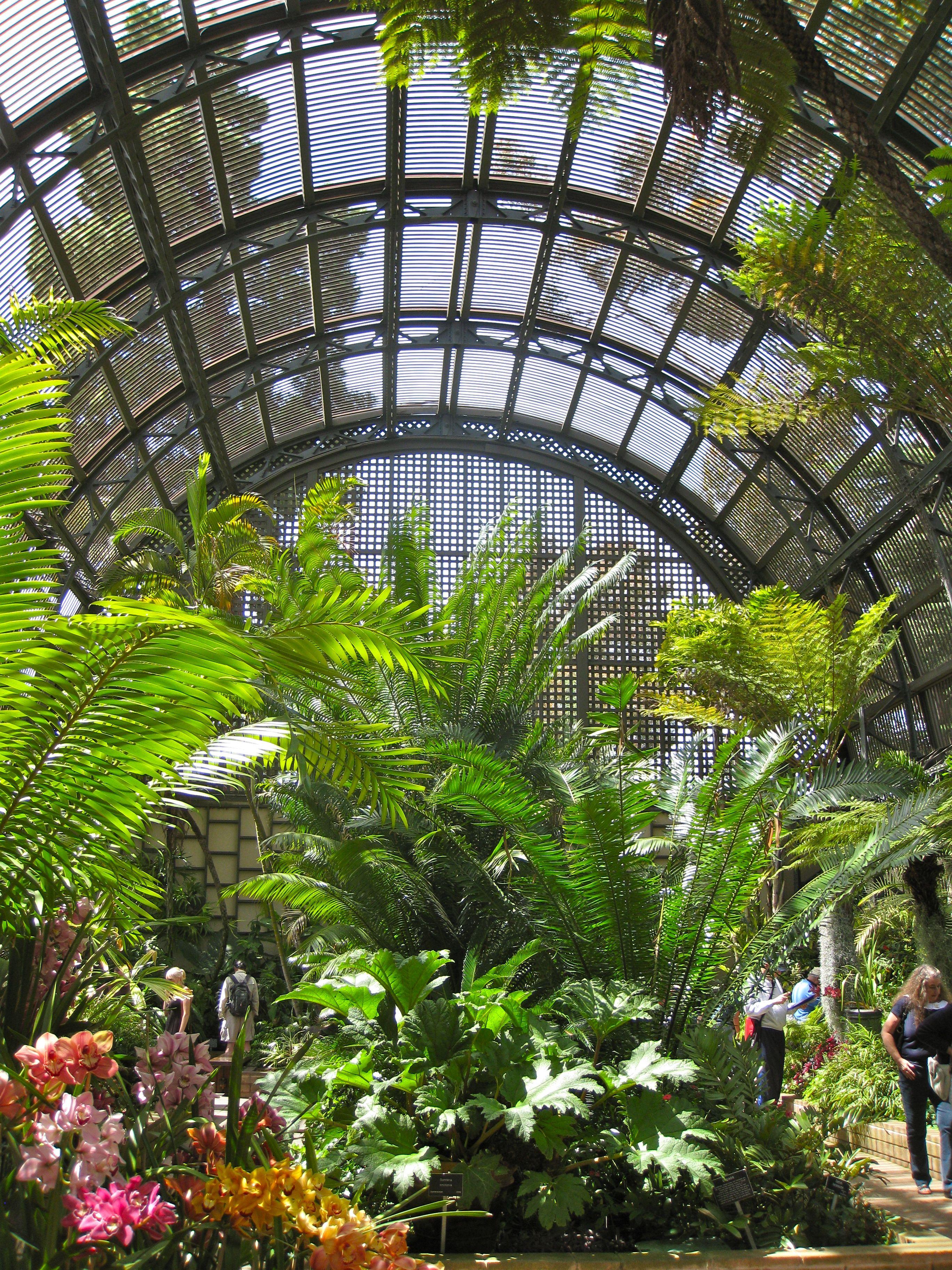 Pingl par kittymimi sur conservatory dreams pinterest for Jardin deluxe fleurs