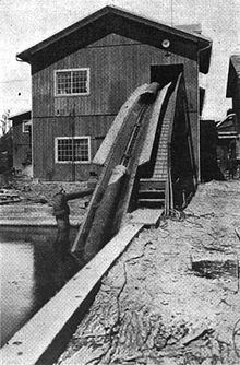 An American sawmill, 1920