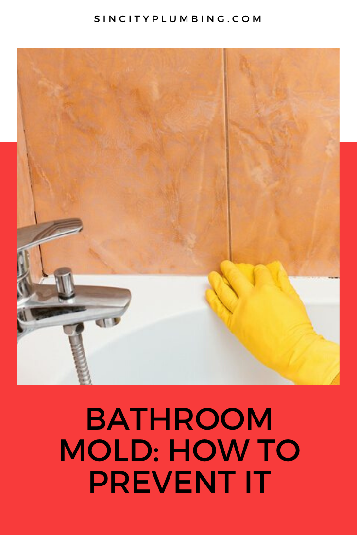Bathroom Mold How To Prevent It Mold In Bathroom Prevention Molding