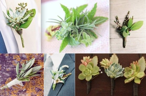 The rest of the boutonnieres will be varied types of greenery and succulents wrapped in emerald green ribbon with the stems showing.