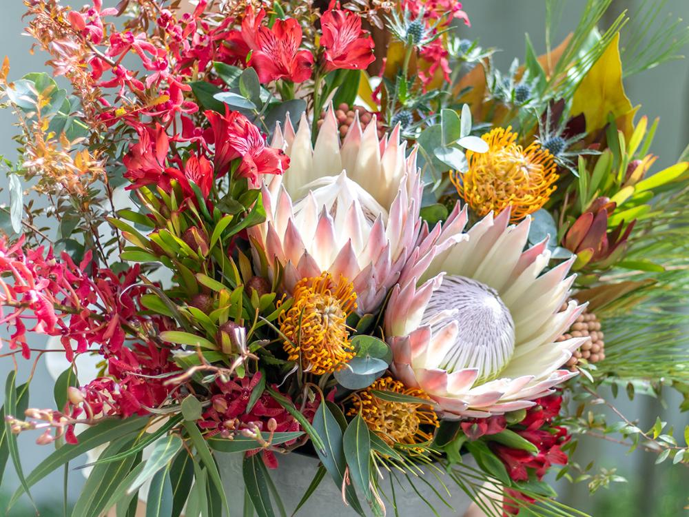 キングプロテア グランデの大きなアレンジメント 世界の花屋 ドライフラワーや珍しい花の通販 海外から直輸入 ドライフラワー 珍しい花 キング プロテア