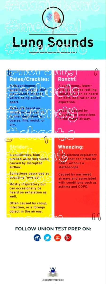 trendy medical assistant student cheat sheets nursing schools  55 trendy medical assistant student cheat sheets nursing schools   Learn what the ancients have known for c...