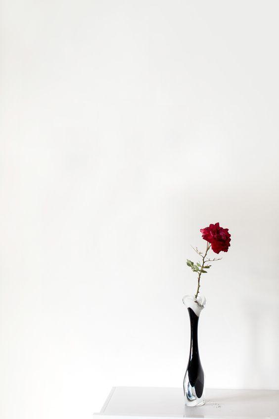Пин от пользователя Seliha Ahter Kumru на доске çiçekler ...