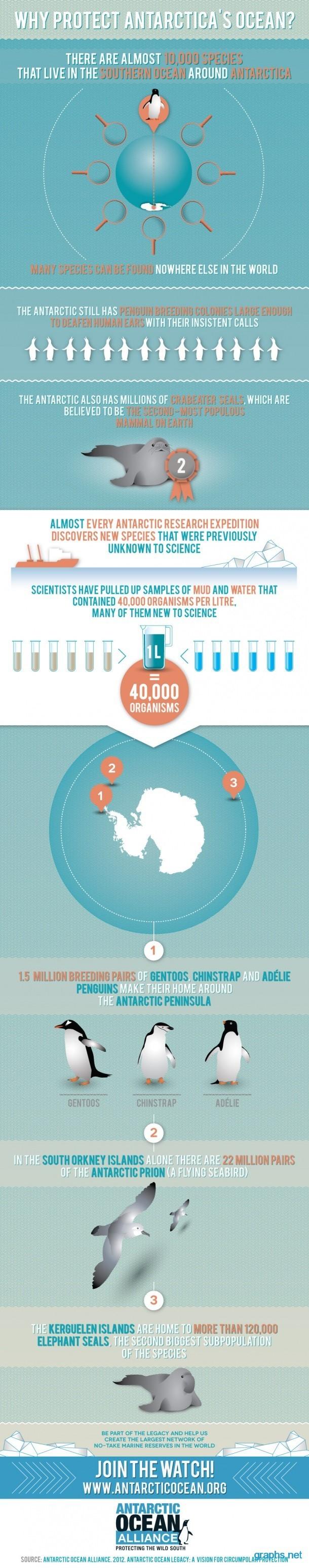 Antarctica   Tom Crean