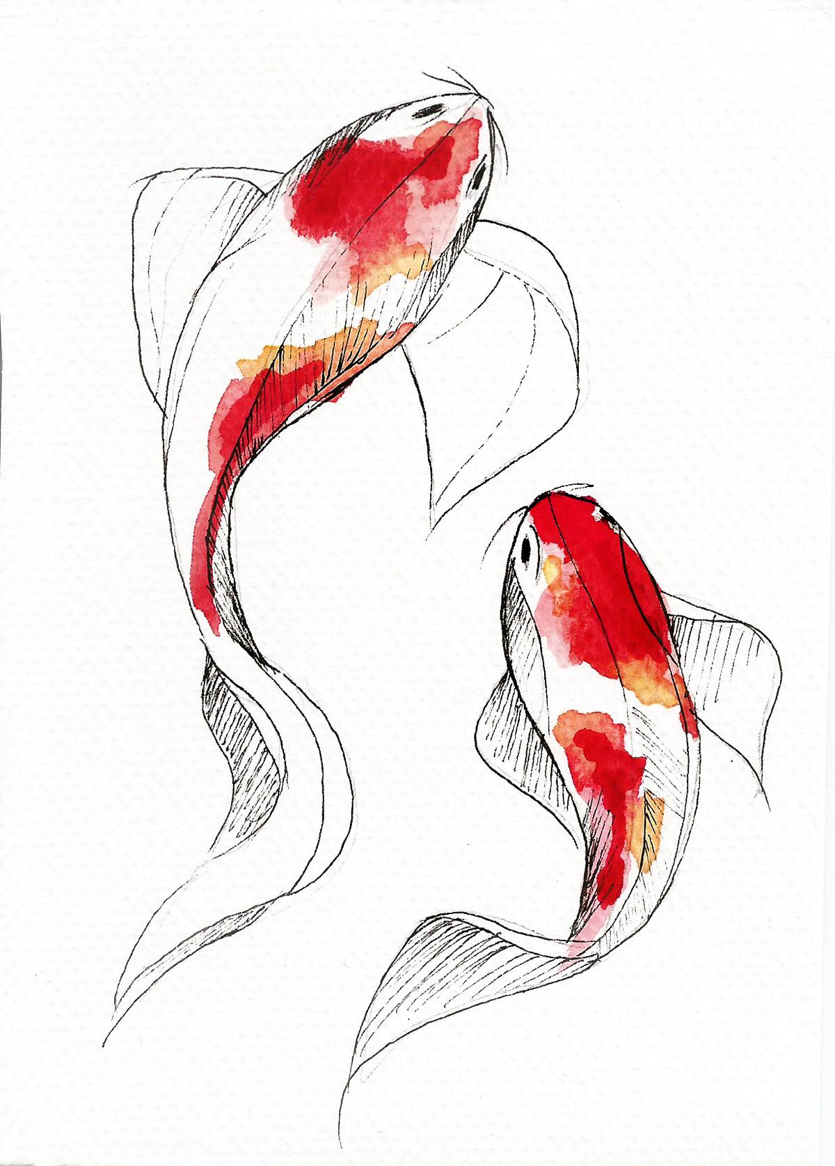 Watercolor Koi Fish On Behance Koi Art Koi Fish Drawing Fish Drawings