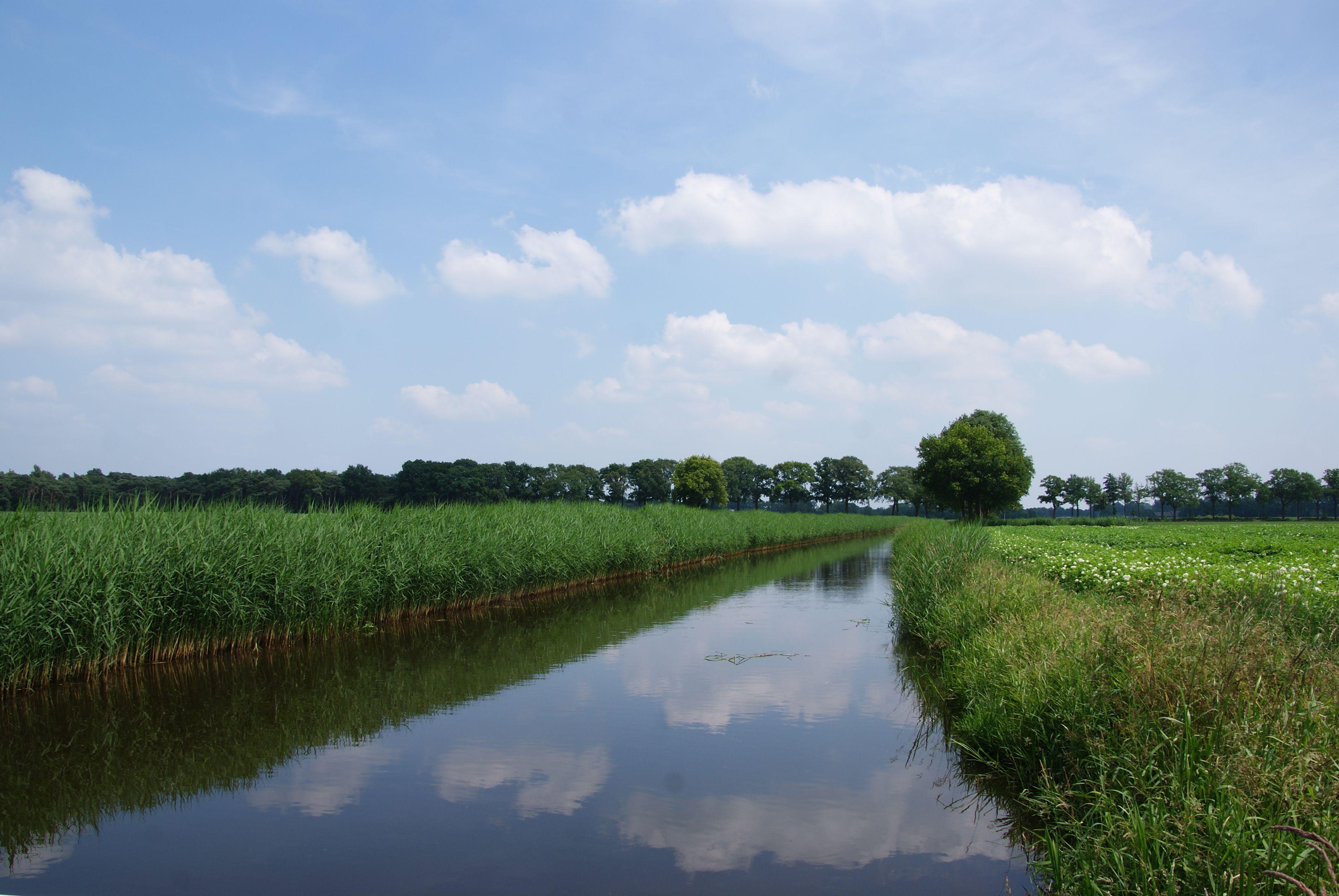 """Riviertje """"de Leijgraaf"""" bij Middelrode"""