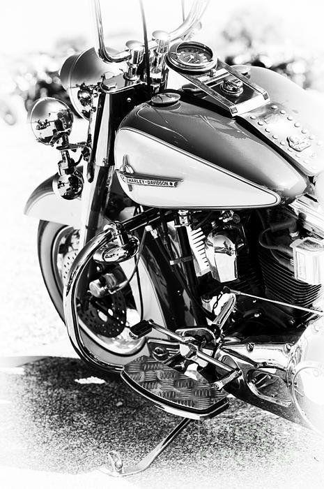Hd Monochrome Poster By Tim Gainey Harley Davidson Bikes Harley Davidson Motorcycles Futuristic Motorcycle