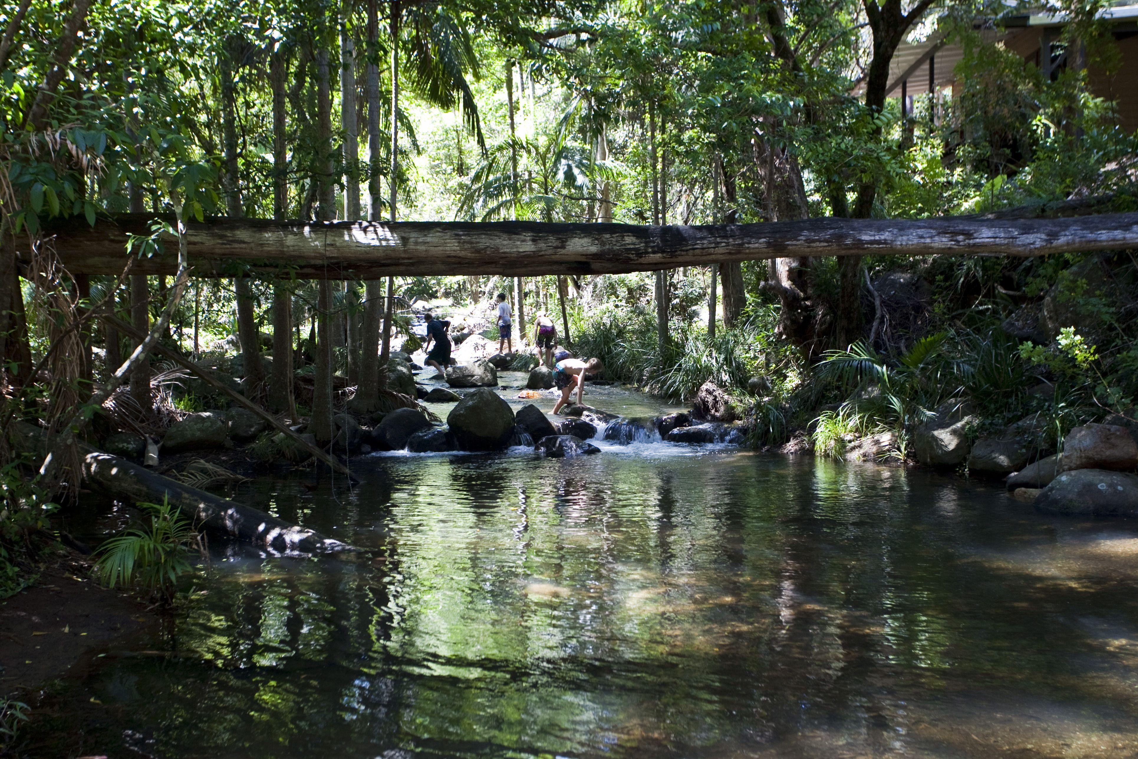 Natural Rock Pools Thunderbird Park Mount Tamborine Rock Pools Picture Places Incredible Places