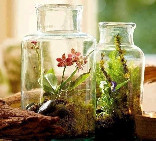 Recetas de aromaterapia