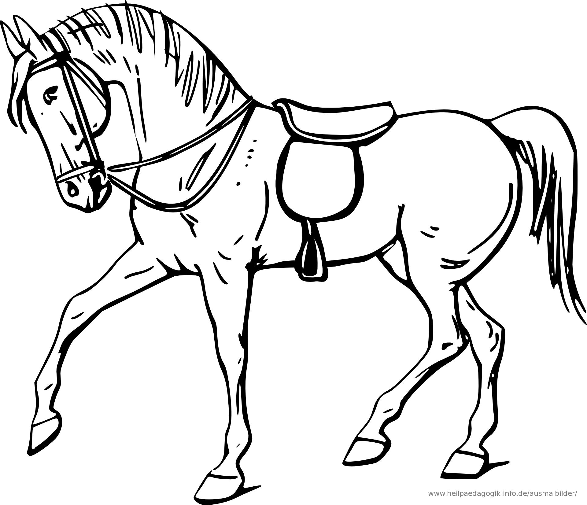 Malvorlagen Von Pferden