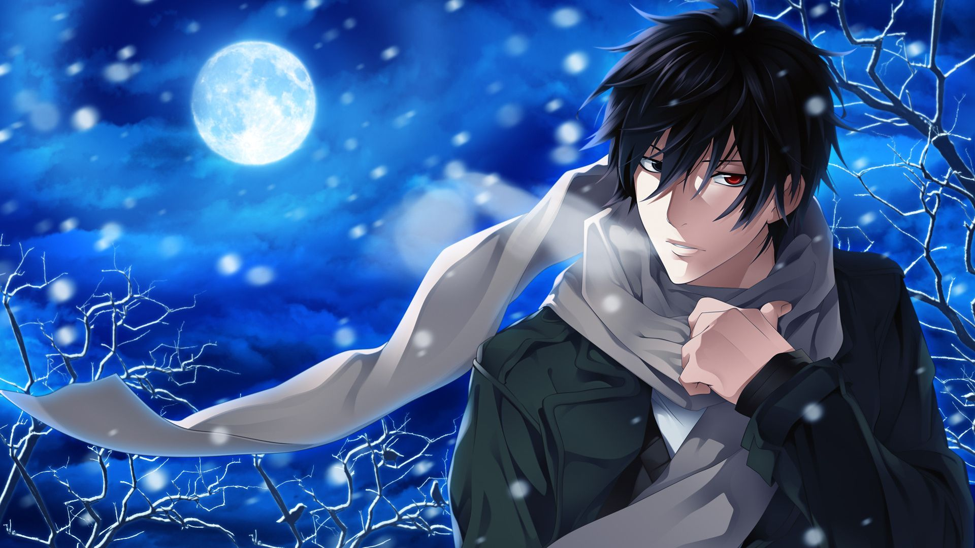 night, guy, the moon, snow, scarf, psychic detective