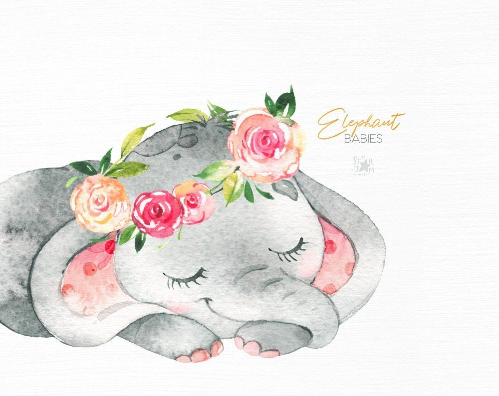 Elephant. Babies. Watercolor little animal clipart, africa ...