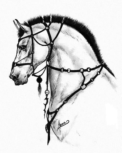 Horse Something By Aaorin On Deviantart Interesting Idea