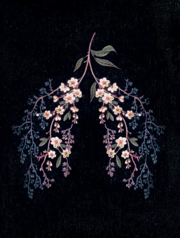 Florence Welch Useless Magic Excerpts Beautifulflorencephotography Art Wallpaper Lungs Art Anatomy Art