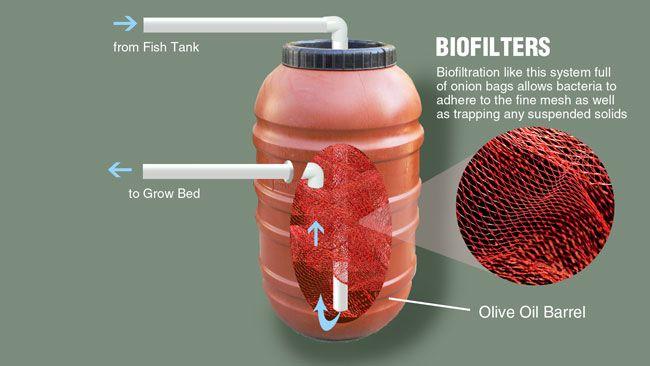 Pond bio filter homemade crazy homemade for Diy biological filter