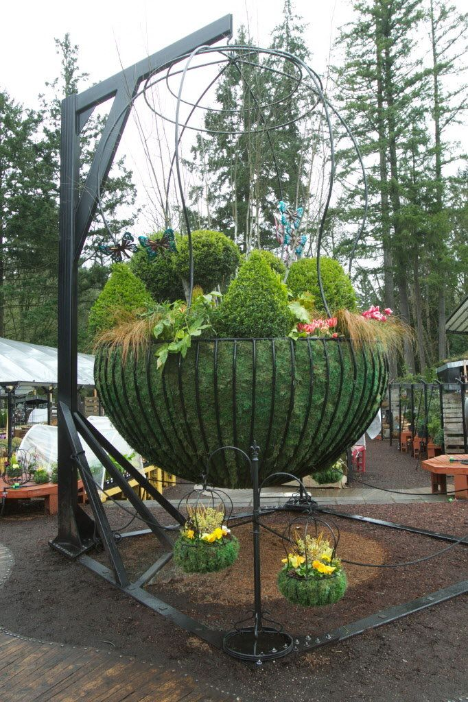 Create Your Own Hanging Baskets, Including Ideas For Containers, How To Do  It, And A List Of Good Plants For Sun Or Shade