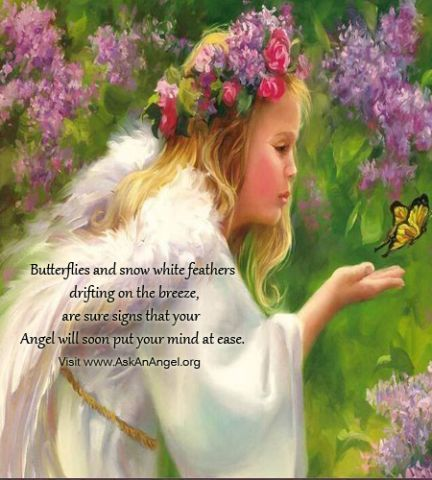 """""""Butterflies and snow white feathers drifting on the breeze, are sure signs that your Angel will soon put your mind at ease."""" Visit www.AskAnAngel.org"""
