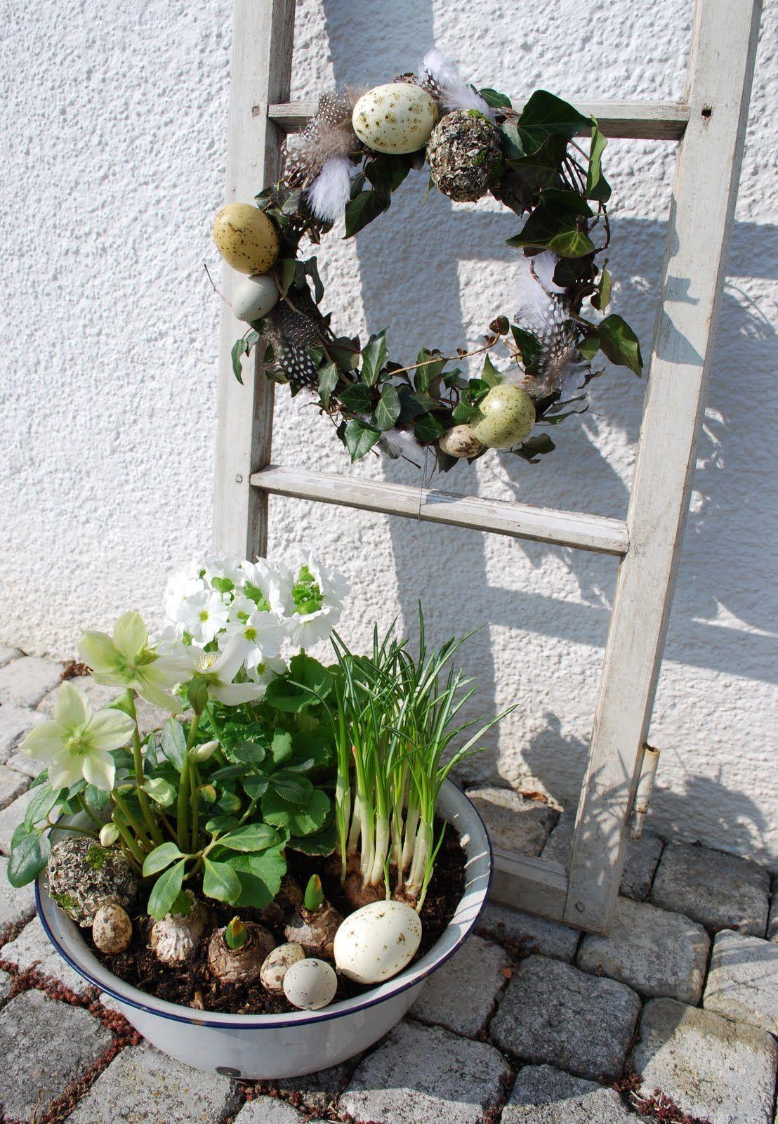 kranz aus eiern und efeu dazu pflanzen wie die christrose und fr hlingsbl hern ostern. Black Bedroom Furniture Sets. Home Design Ideas