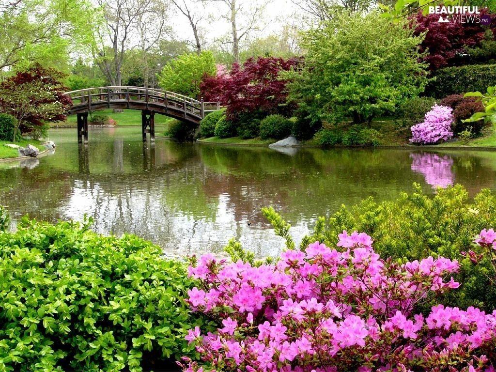 Flowers Water Garden Bridges Missouri Botanical Garden Scenery Pictures Japanese Garden Amazing flower bridge wallpaper