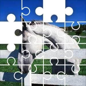 Horse at a fence Jigsaw Puzzle, 48 Piece Classic.