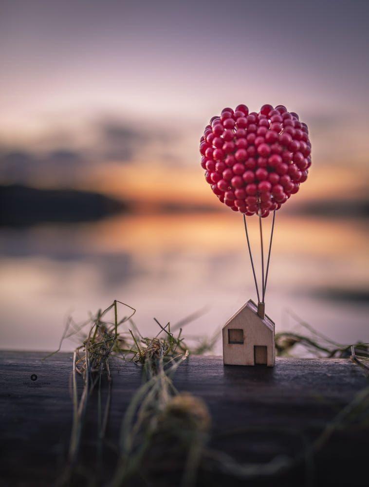 HAYAL ET (DREAM)🍎 | Yaratıcı fotoğrafçılık, Soyut fotoğrafçılık, Resim