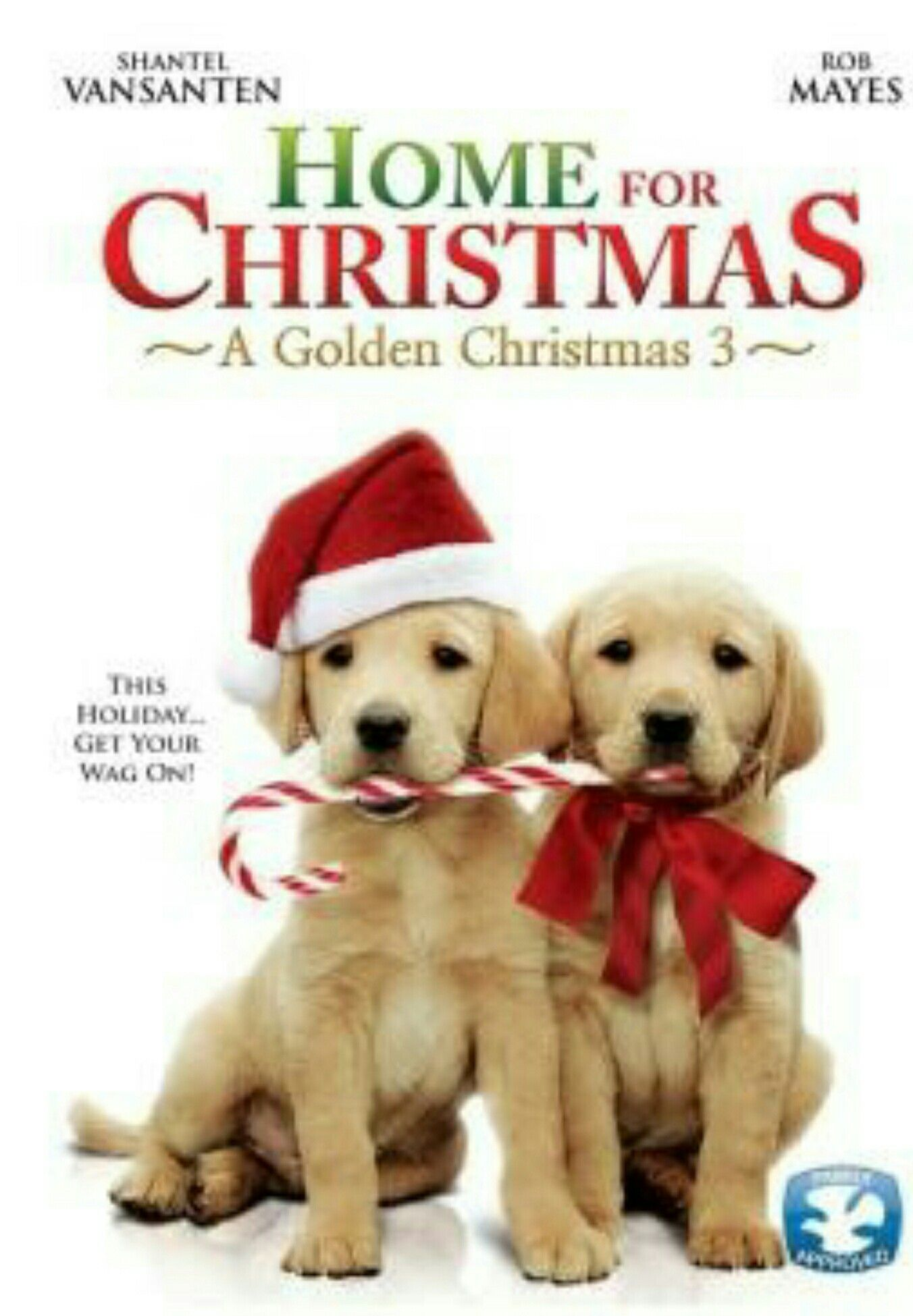 Pin By Theokdogs On Dog Christmas Movies Christmas Dvd Christmas Movies Dog Movies