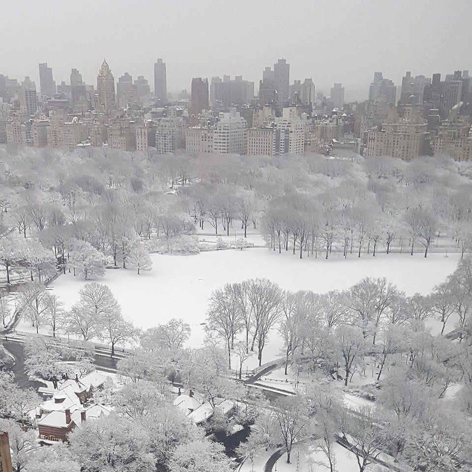 O distintíssimo jornalista Guga Chacra nos presenteia com mais uma obra de arte. A foto abaixo é do Central Park, hoje pela manhã, sacada pelo próprio.
