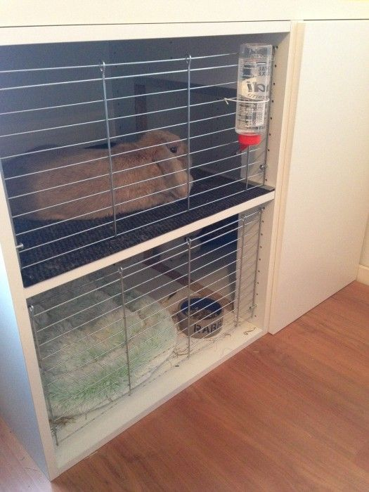 Bunny Cage With Faktum Cabinets Ikea Hackers Clever Ideas And Hacks For Your