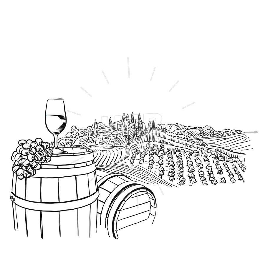 Vineyard Landscape With Glass Illustration Hebstreits Sketches Illyustracii Risunki Risunki Dlya Raskrashivaniya