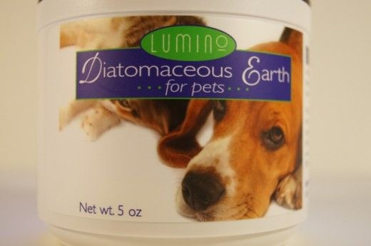 Is Diatomaceous Earth Safe for Dogs and Will It Kill Fleas