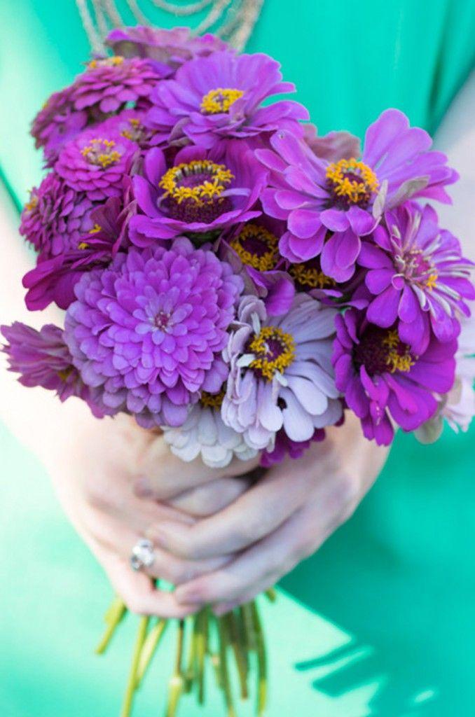 Purple zinnias purple fall flowers wedding flowers pinterest purple zinnias purple fall flowers mightylinksfo