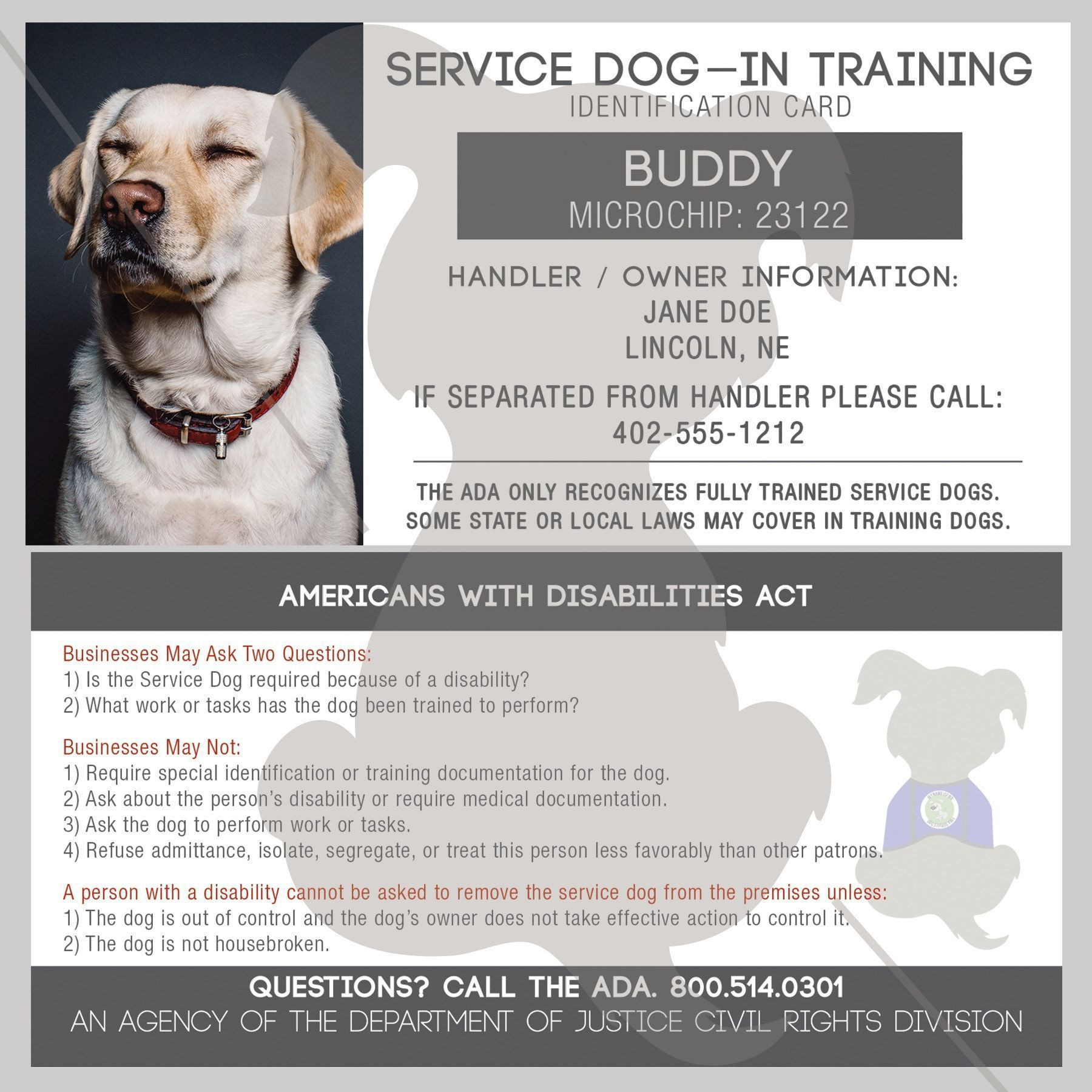 Id Card Service Dog In Training Doganxietydiy Service Dogs Dog Training Dog Identification
