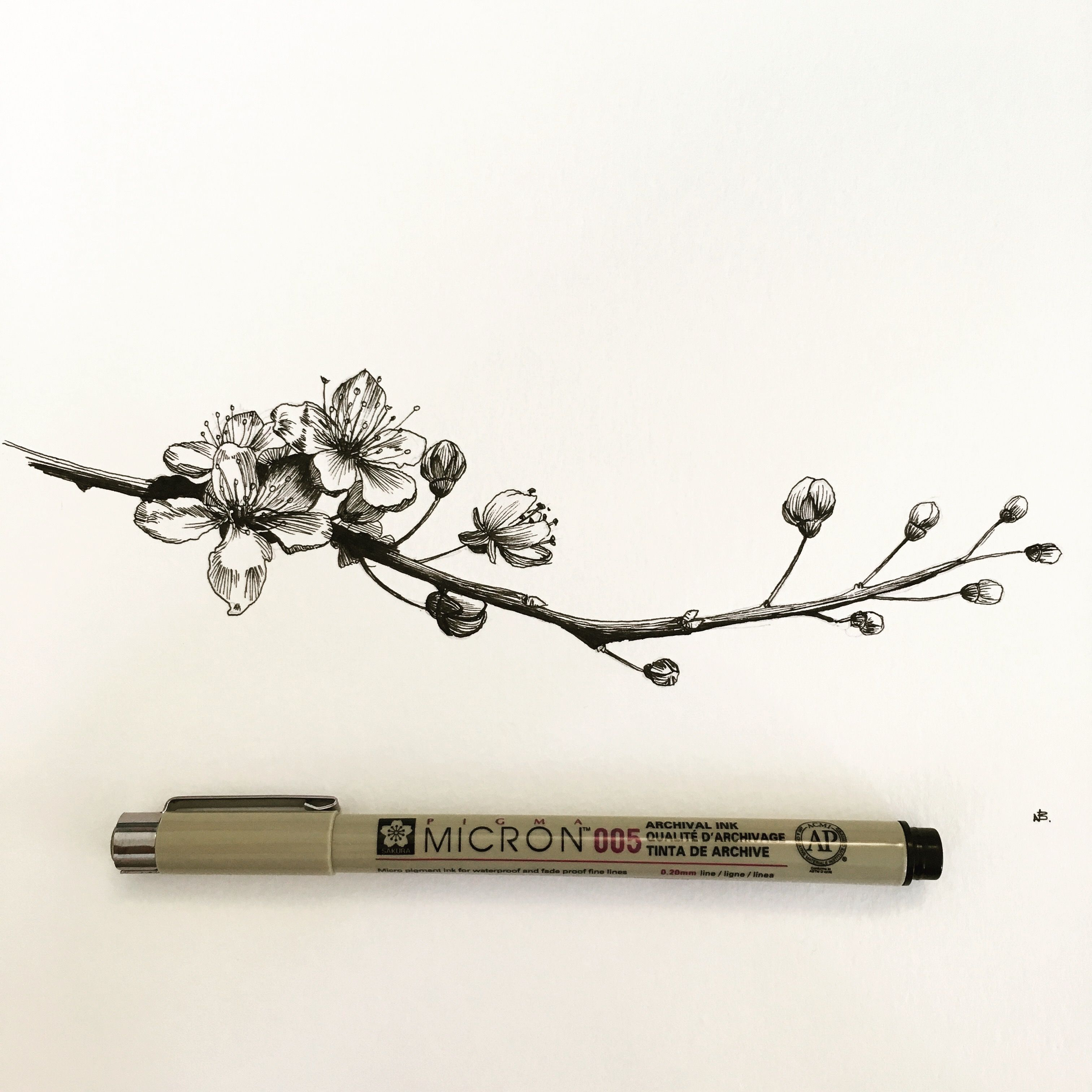 Epingle Par Gabou Dallaire Sur Mes Tatouages Fleur De Cerisier Dessin Tatouage Cerisier Cerisier