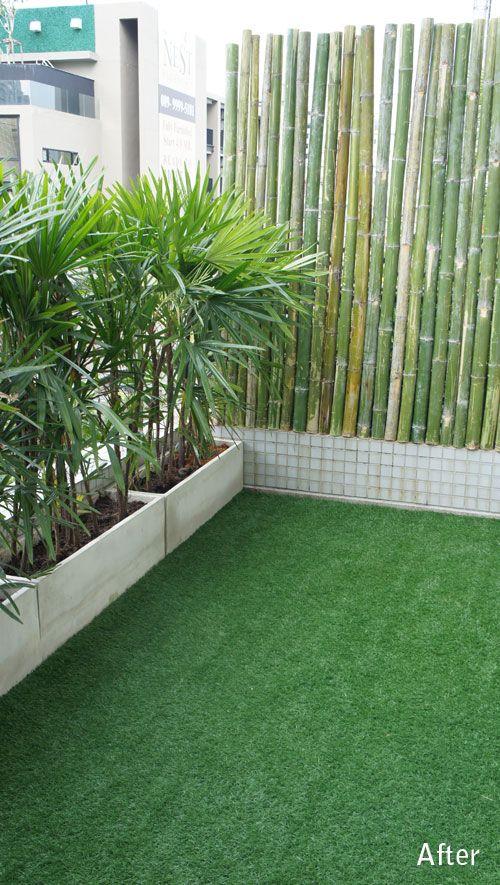 bambous pour briser vue terrasse am nagement balcon pinterest bambou balcons et terrasses. Black Bedroom Furniture Sets. Home Design Ideas